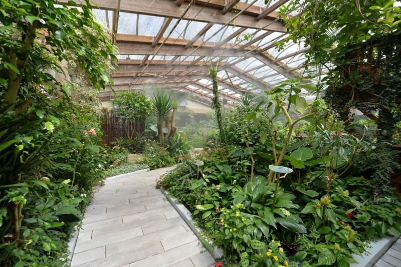 hd-jardin-papillons-2-82